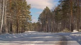 mrożonki : Empty car road and snowy forest in countryside at winter day. Winter landscape snowy car roan and forest. Winter nature concept. Background for composing winter outdoors