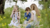 Children are having a lunch walking on the glade. Teens two girls and boy eat pizza on picnic sitting on meadow among wildflowers. Friends spend time together in park. Vidéos Libres De Droits