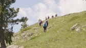Tourists Go up Hike Green Hill Landscape Stones. Adult Caucasian Hikers Climb Highland Scenery Backpackers Travel. Active Healthy Lifestyle Free Time Activity Vacation Concept Back View Vidéos Libres De Droits