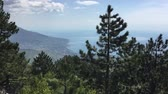 Wonderful panoramic view on sea, valley and coastal town from huge mountain covered wood. Beautiful nature seascape and mountainside landscape with woods. Sunny and cloudy summer weather. Стоковые видеозаписи