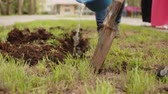 Man digging soil with shovel on flower bed. Digging lawn for planting flowers in flowerbed. Gardening and landscaping