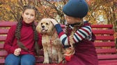родословная : Cute happy girls stroking dog in autumn park. Adorable smiling kids sitting on wooden bench with brown fluffy dog in autumn park