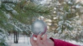 bombki : Close-up view of shiny silver xmas ball toy hanging in winter forest. Cropped shot of woman touching and playing festive christmas bauble hanging on branch of evergreen tree in beautiful winter forest