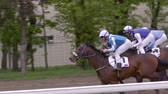 ипподром : MOSCOW - CIRCA MAY 2015 , Moscow, central Moscow hippodrome,MAY 2015, running Horse Slow Motion,gallop to the finish line