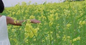 arejado : little Asian girl 8-9 years old running through the field of yellow flowers, slow motion, close-up, hand Vídeos