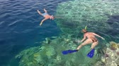 watercolor : snorkeling near coral reef, man and woman looking under water, Red Sea, Egypt Stock Footage