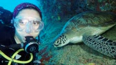 black sea turtle : Female scuba diver and Green sea turtle - Chelonia mydas, Indian Ocean, Maldives Stock Footage