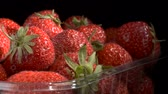 fragaria : Juicy ripe strawberries in disposable plastic food pack on black background. Rotation 360 degrees, closeup. 4K - 50fps