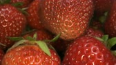 fragaria : Extreme close up of ripe strawberries. Rotation 360 degrees. 4K - 50fps Stock Footage