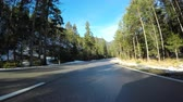 An Empty Road Surrounded By Trees In Austria 4K