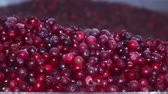 oxicoco : Frozen red cranberries