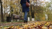 angustia : The silhouette of a woman in the autumn Park.