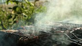 미각 : Barbecue in nature. Picnic.