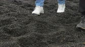 tinted : black pebble beach, feet in sneakers of two tourists close up, walking through frame Stock Footage
