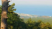porta : view from Tahtali mountain on seacost with countries, hotels, resorts, forest Vídeos