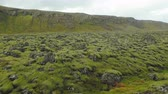 intocada : old lava field covered by moss near hills in Iceland, in autumn day, cloudy weather, moving shot