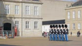 lined up : Copenhagen, Denmark - OCT, 2017: soldiers of Royal Life Guards are prepared for changing, tourists and citizens are walking near in sunny weather Stock Footage