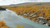 glaciální : Hraunfossar waterfalls are in Iceland in sunny autumn day, yellowed grass and bushes