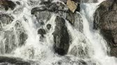 flowing water : rapid stream of mountain river is flowing over hard rocks and creating small waterfalls