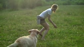 field : Girl plays with labrador