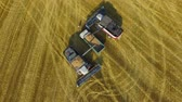 biomassa : Two combines put harvested crops into a transporting machine for transportation to the factory 4K