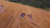 Aerial wide angle shot where three combines are working on the field for harvest wheat 4K
