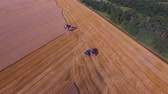 biomasse : Beautiful aerial wide angle shot where three combines are working on the field for harvest wheat 4K