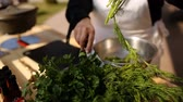 fennel : chopping and slicing of dill, greens Stock Footage