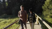 wooden bridge : Young couple walking on a bridge, back view of Stock Footage