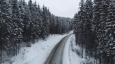 enrolamento : Winter mountain road surrounded by snowy trees. Stock Footage