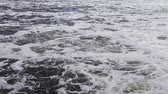 Fast flow on. the river. Foam is floating on the waterPower of nature. Stok Video