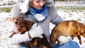 miniatűr : Woman playing with her little dogs outside winter
