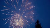 The fireworks start later on the tree, against the blue sky. Slow motion, close-up. Stock Footage