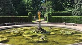 europa : Peaceful fountain water jet in the middle  covered by water lily blossom and surrounded by tall tree