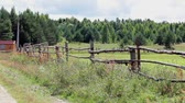 фехтование : Rural summer landscape with wooden fence in Russia. Zoom in Стоковые видеозаписи