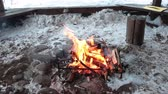 glow : Bonfire in a wooden canopy between pebbles at winter season, nobody, loop