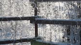 não urbano : Sparkling snowflakes flying through the wooden fence at winter sun light