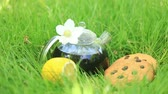 brochura : Black tea in a transparent teapot on the grass. Breakfast on the nature with cookies Stock Footage
