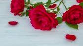 mother board : Romantic background with red rose on wood table, top view