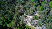naturalistic : Thick forest in the mountains. Blue mountains national park. Aerial top view. Stock Footage
