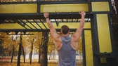 latão : sexy young athlete doing pull-ups in the park for the growth of the back Stock Footage