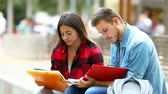 estudioso : Two studious students concentrated memorizing notes in a park Stock Footage