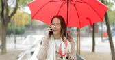 guarda chuva : Front view portrait of a serious woman walking in a park talking on phone holding a red umbrella under the rain Vídeos