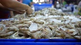 貝 : select large shrimps, buy shrimp in fresh market 動画素材