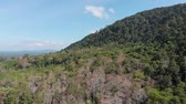 stupeň : Open world nature scenics 360 dedree view. Above the mountain covering by forest in Trang south of Thailand Dostupné videozáznamy