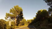 não urbano : Forest road POV from car moving at sunset, timelapse