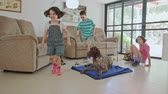 obediência : Three kids playing with a German pointer dog inside a house