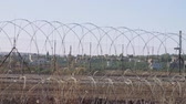 filistin : Border fence between Israel and West Bank. barbed wire electronic fence.