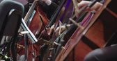 senfoni : Musician playing Cello during a classical music rehearsal before a concert Stok Video