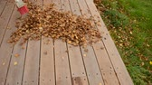 patio : sweeping leaf off wooden patio and onto lawn in autumn